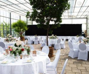 Tische bei einer Veranstaltung im Glashaus