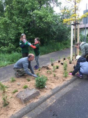 Die Minigärtner haben wieder gepflanzt!
